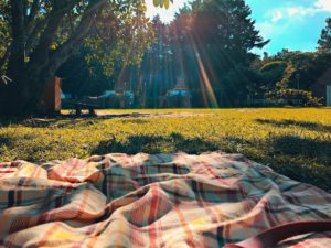 picnic blanket under tree - stay safe outdoors during COVID-19